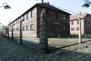 Bleak sunshine at Auschwitz