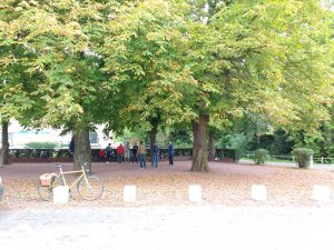 Locals playing petanque under a huge conker tree in the sunshine.