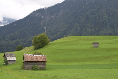 Grazing meadow in the Pitz valley.
